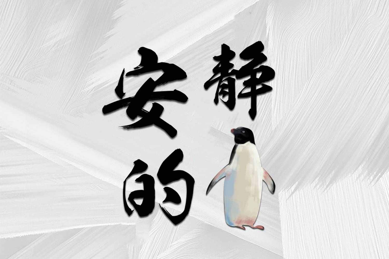 安静的企鹅
